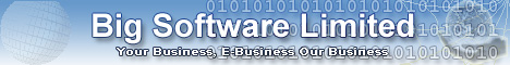 Big Software Ltd